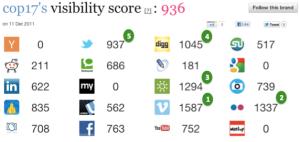 COP17 - Online Visibility Score