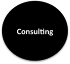 eNitiate_Consulting_Services