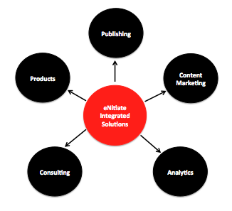 eNitiate Integrated Solutions Cycle of Services
