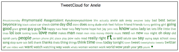 TweetStats: Anele's Word Frequency Analysis