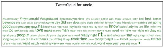 TweetStats: Anele's Word Frequency Analysis